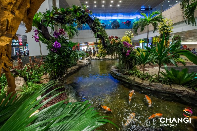 the calming range of gardens at Changi Airport